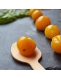 "Pomodorino giallo al naturale ""Gourmet"""