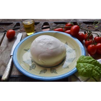 Organic P.D.O. Buffalo Mozzarella